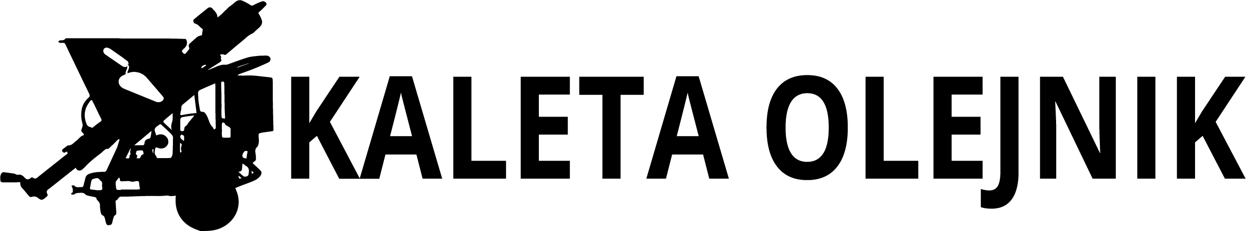 Kaleta Olejnik